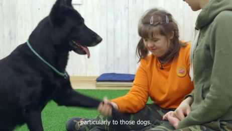 Pedigree: pUp syndrome Film by BBDO Moscow, Bureau Working Title