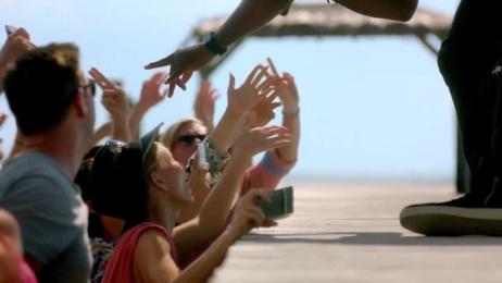 Shark Week: It's Still a Bad Week to be a Seal! Film by AV Squad