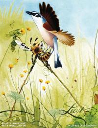 Lust Erotic Boutique: Birds & Bees, 2 Print Ad by Grey Copenhagen