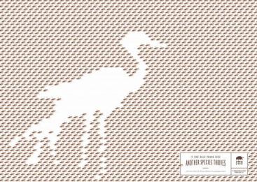 Johannesburg Zoo: Bird Print Ad by Y&R Johannesburg