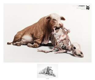 WMF Kitchen Knives: Beef [alternative version] Print Ad by Illusion, McCann Bangkok