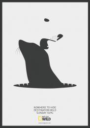 National Geographic: Polar Bear VS Seal Print Ad by Team collaboration