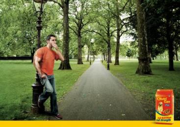 Nutrican Pet Food: STRONG ARM Print Ad by Quorum Saatchi & Saatchi Lima