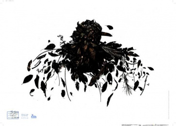 BirdLife: Burnt, 4 Print Ad by Miracle Factory, Nemesis Pictures, Saatchi & Saatchi Singapore