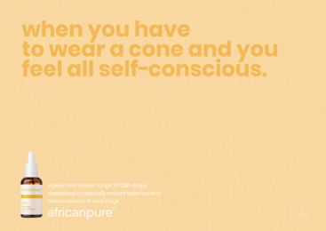 africanpure CBD: Cone Print Ad by Canvas Cape Town
