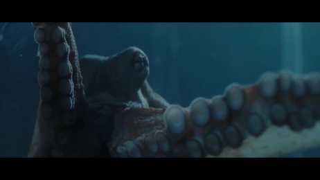 Octopus Watches: Octopustore Film by 75 Productuon, HUMANSEVEN