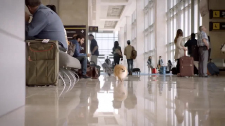 Dockers: How To Get The Upgrade Film by Biscuit Filmworks, FCB West San Francisco
