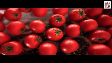 Leggo's Tomato Paste: RHAPSODY IN RED Film by Grey Melbourne