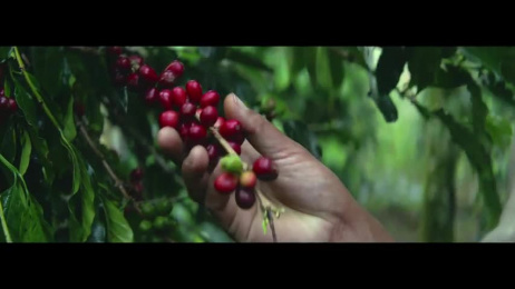 Nespresso: Master Origins Film by J. Walter Thompson London