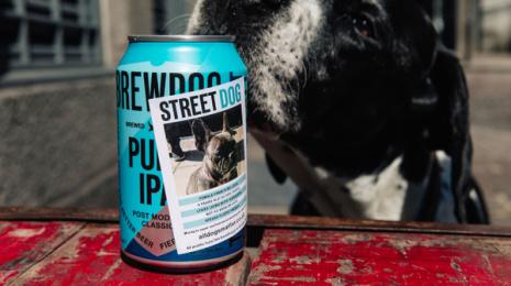 Brewdog Beer: StreetDog, 1 Print Ad by Uncommon London