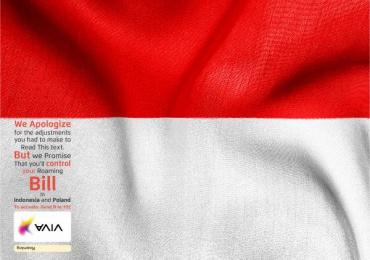 Viva: Adjustments Flags for Roaming, 2 Print Ad by Memac Ogilvy & Mather Dubai