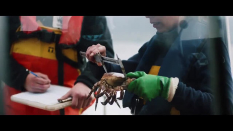 WWF: Our home, our treasured planet Film by All Mighty Pictures