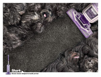 Shark: Dogs Print Ad by Mench Israel
