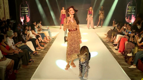Magnum: Augmented Reality Fashion Show Film by Xenium Digital Pvt Ltd, Mumbai, India