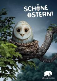Zoo Cologne: Owl Print Ad by Preuss Und Preuss Germany