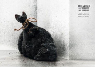 Foundation Tier im Recht: Sheep Print Ad by Ruf Lanz