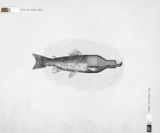 Axe: Fishmarker Print Ad by Bond Santiago