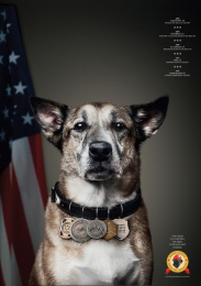 National Disaster Search Dog Foundation: Toby Print Ad by Y&R New York