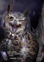 Huawei: Owl Print Ad by GForce/Grey Almaty