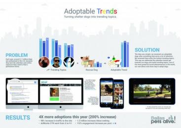 Dallas Pets Alive/ DPA: Adoptable Trends Digital Advert by Dieste Harmel & Partners, Letca Films