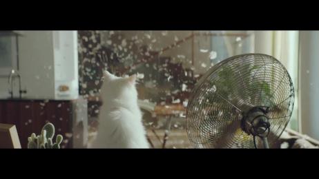 Samsung: Duel Film by Cheil Kyiv, ESSE HOUSE