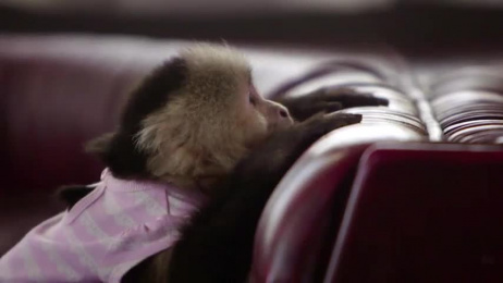 Ziploc: Dining out Film by Energy BBDO Chicago, Road Trip, Rsa Films