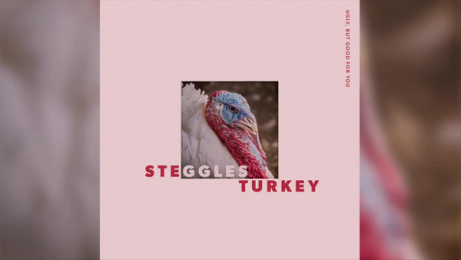 Steggles Turkey: Ugly but good for you: Pop Power Pump Digital Advert by M&C Saatchi Auckland