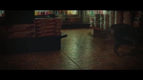 New York Lottery: Bodega Cat Film by McCann New York, Rsa Films