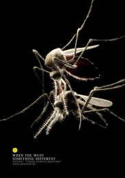 Cinema Without Frontiers Festival: MOSQUITO Print Ad by Mors