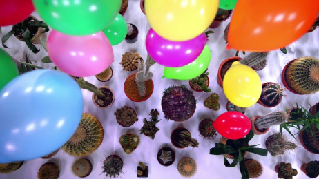 Sony Xperia XZ: Balloons vs cacti Film by TMW