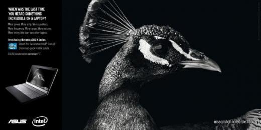 Asus: Peacock Print Ad by ZenithOptimedia London