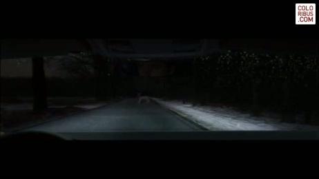Volkswagen Wiper Blades: DEER Film by DDB Berlin